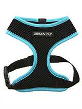 Active Mesh Neon Blue Harness - Get fit, stay safe, stay seen. Treat your training buddy to an attractive new Active Mesh Harness with a dash of sporty neon to compliment your keep fit gear. But also great for regular walkies.<br /><br />High visibility Active Mesh Neon Harnesses provide the ultimate in comfort and safety, featuri...
