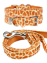 Giraffe Print Fabric Collar & Lead Set - Our Faux Giraffe collar and lead set is a contemporary animal print style and is right on trend. It is a contemporary style and the pattern is on trend. It is lightweight and incredibly strong. The collar has been finished with chrome detailing including the eyelets and tip of the collar. A matching...